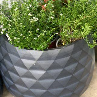Grey drum pot